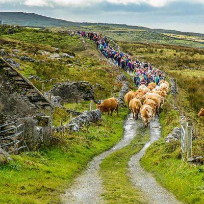 The Burren in Ireland | Conserving A Unique Cultural Landscape