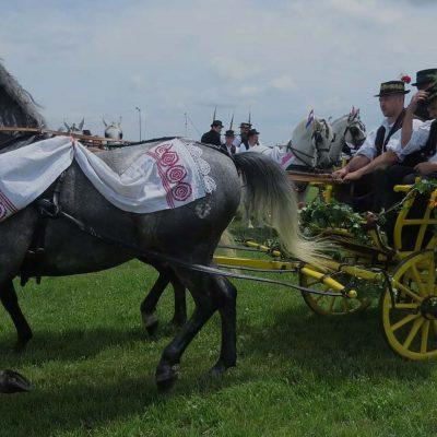 Brodsko Kolo Slavonski Brod: A Festival from Croatia's Slavonia Region