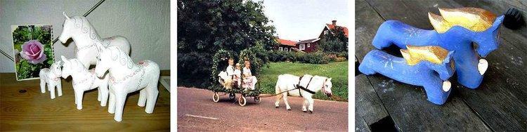 Horses in Sweden